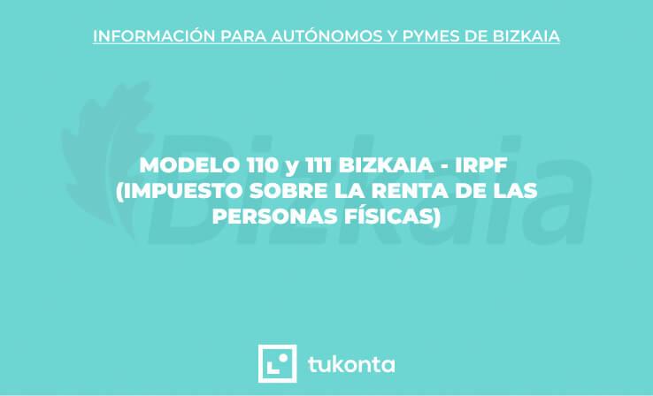 modelo-110-irpf-bizkaia