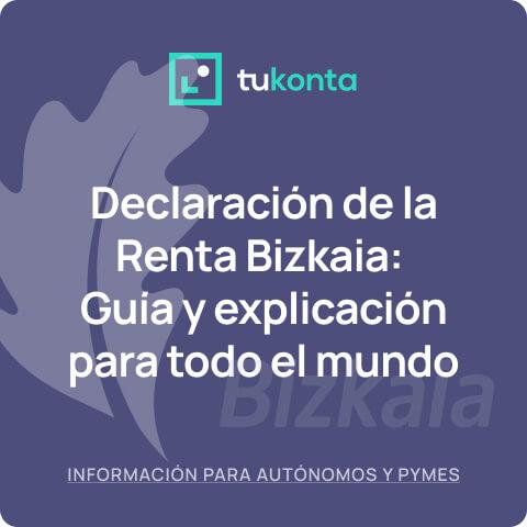 declaracion-renta-bizkaia-guia-definitiva