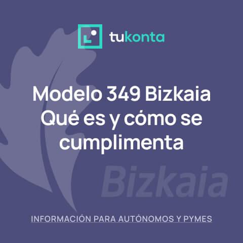 tukonta-modelo-349-bizkaia